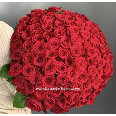 """101 Roses """"Real Love"""""""