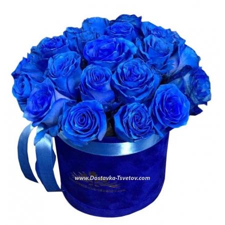 """Розы """"Синий Бриллиант"""""""