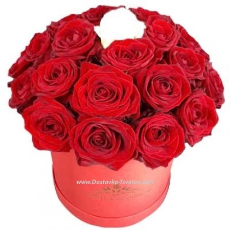 """Розы """"Леди в красном"""""""