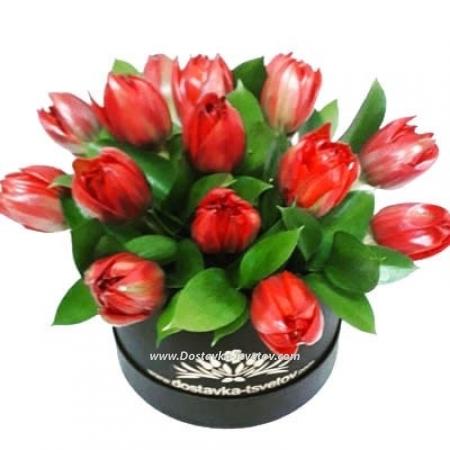 "Тюльпаны ""Страстная Любовь"""