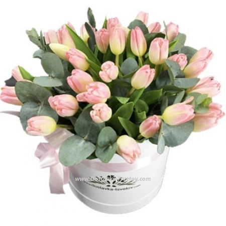 """Розовые тюльпаны """"Белиссимо"""""""