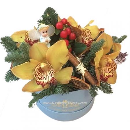 """Орхидеи в коробке """"Новый День"""""""