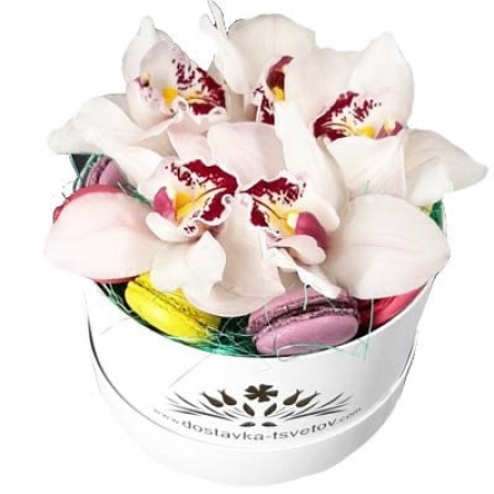 "Коробка орхидей ""Килиманджаро"""
