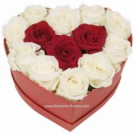 """Красно-белые розы """"Блаженство"""""""
