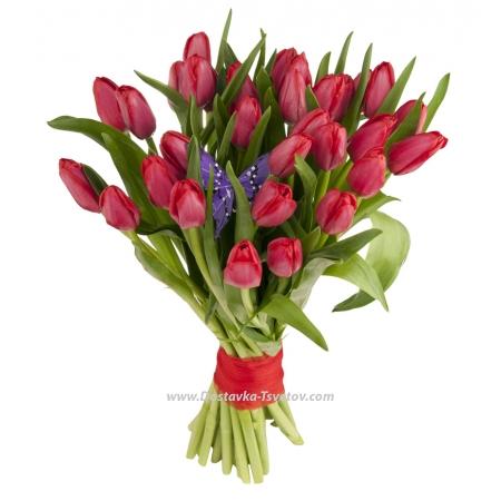 """Цветы Красные тюльпаны """"Аладдин"""""""