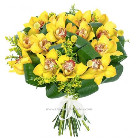 """Желтые орхидеи """"Жар-Птица"""""""