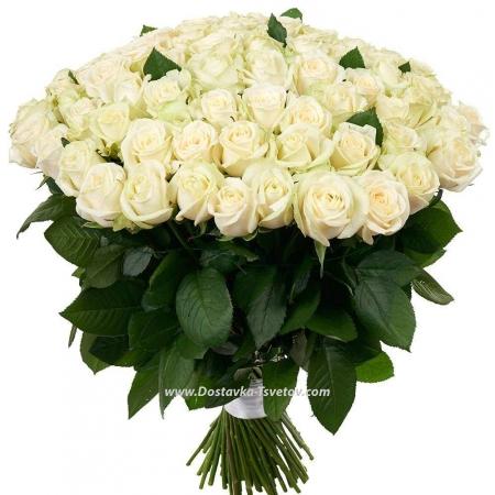 """Высокие розы """"Белое Безмолвие"""""""