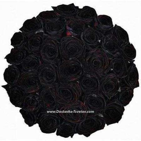 """Букет роз """"Чёрный Квадрат"""""""