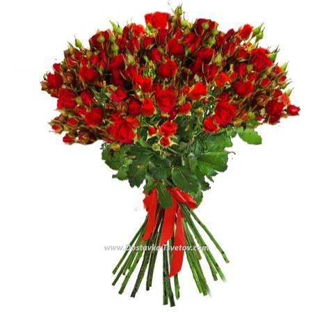 """Красные кустовые розы """"Кейт"""""""