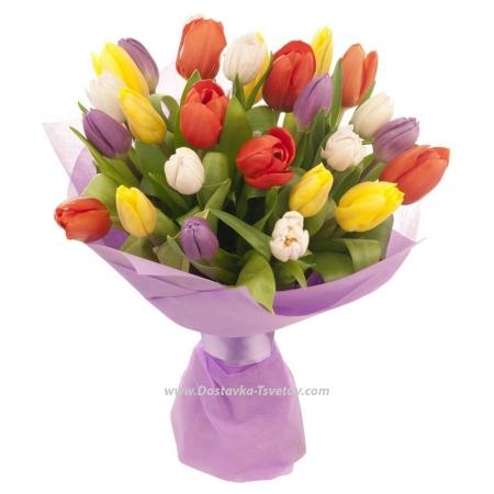"Цветные тюльпаны ""Флирт"""