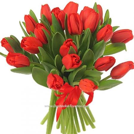"""Красные тюльпаны """"Огни Города"""""""
