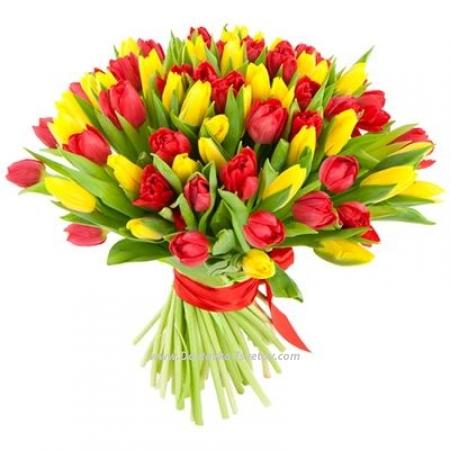 "Тюльпаны двух цветов ""Салют"""