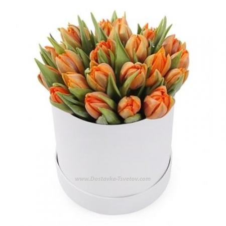 "Тюльпаны в коробке ""Сердолик"""