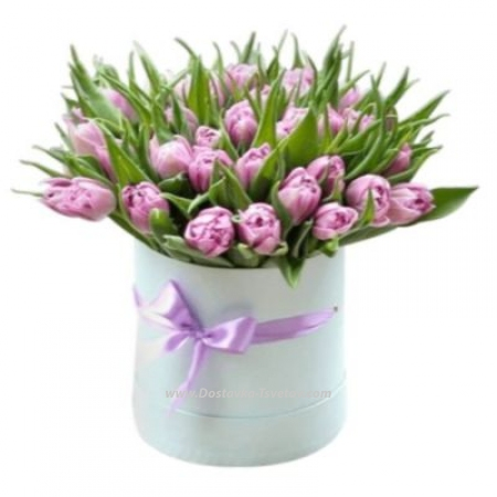"Тюльпаны в коробке ""Камыши"""