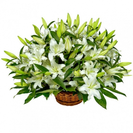 "Lilies in a basket Белые лилии ""Сонное Утро"""