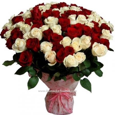 """Красно-белые розы """"Богиня"""""""