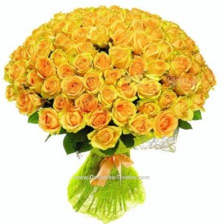 """Жёлтые розы """"Солнечный Рай"""""""