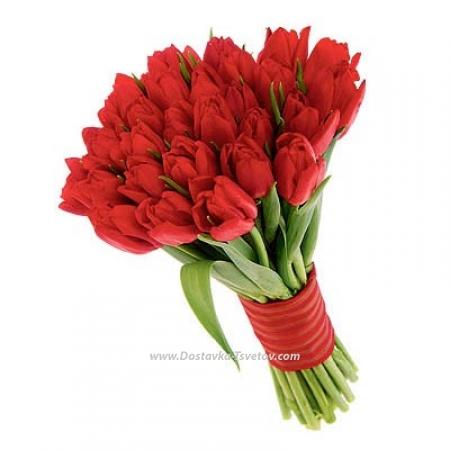 """Красные тюльпаны """"Аморэ"""""""