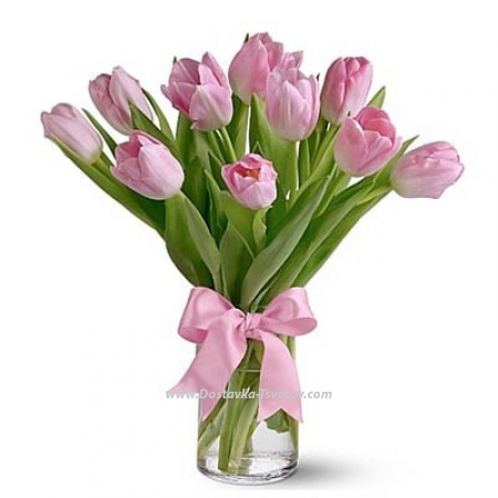 "11 тюльпанов ""Звездопад"""