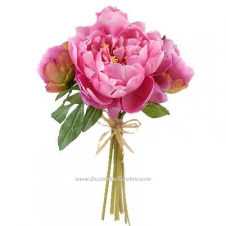 """Розовые пионы """"Ангелина"""""""
