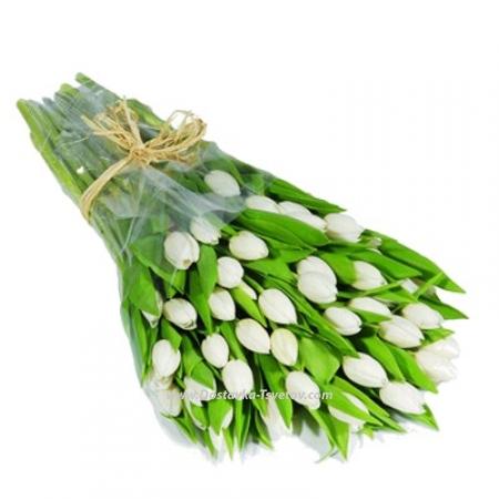 """Белые тюльпаны """"Будда"""""""