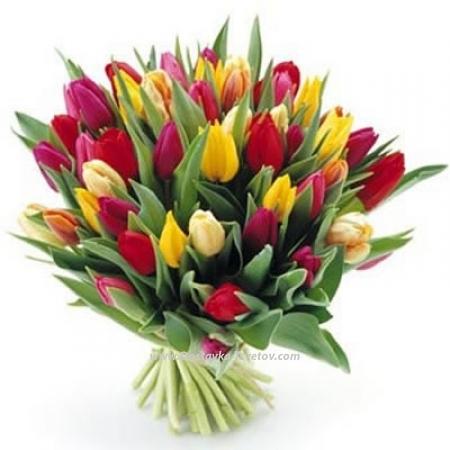 "Разноцветные тюльпаны ""Дэнс"""