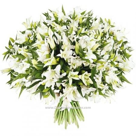 """Белые лилии """"Снежный Вальс"""""""