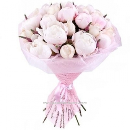 """Peonies Розовые цветы """"Пион Счастья"""""""