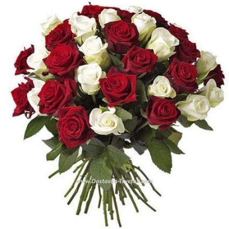 """Красно-белые розы """"Сантьяго"""""""