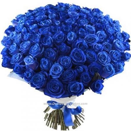 """Синяя роза """" 101 Дельфин"""""""