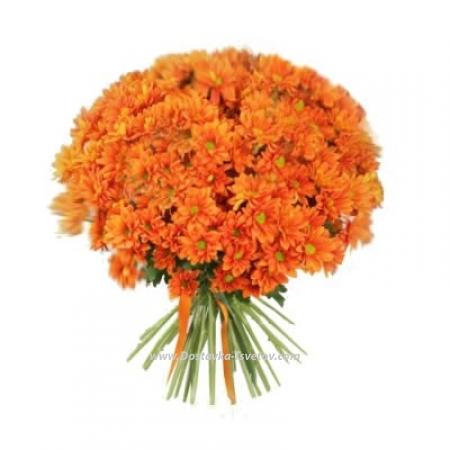 "Хризантемы ""Оранжевый закат"""