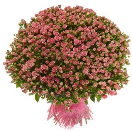 """Розы кустовые """"Розовая Долина"""""""
