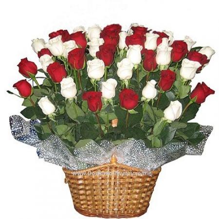 """Roses Красно-белые розы """"Верона"""""""