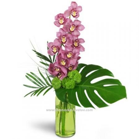 """Ветка орхидеи """"Вечный Рим"""""""