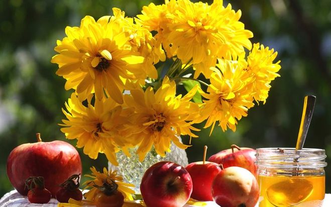 Картинки цветы природа фрукты