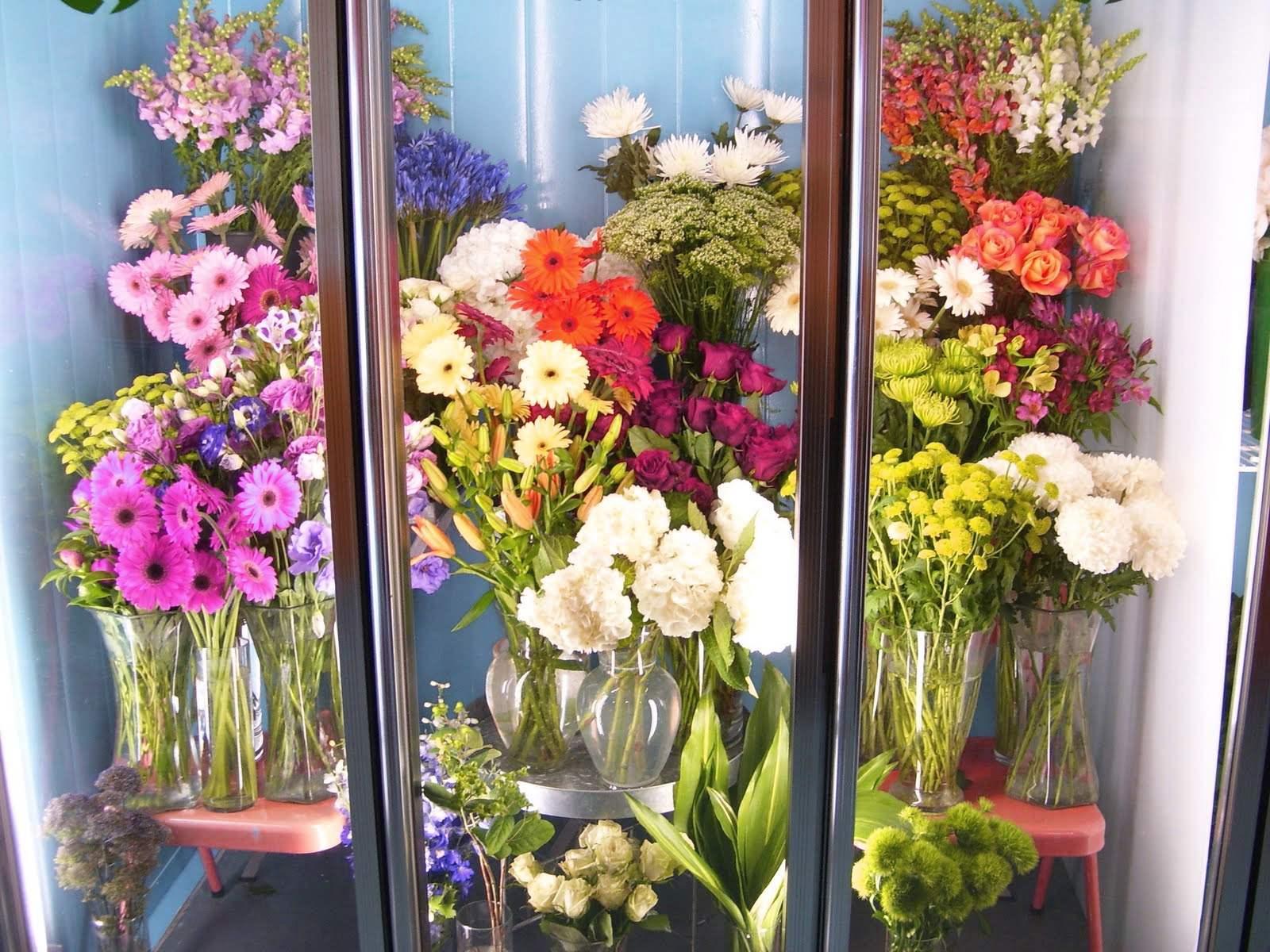 При какой температуре хранить цветы