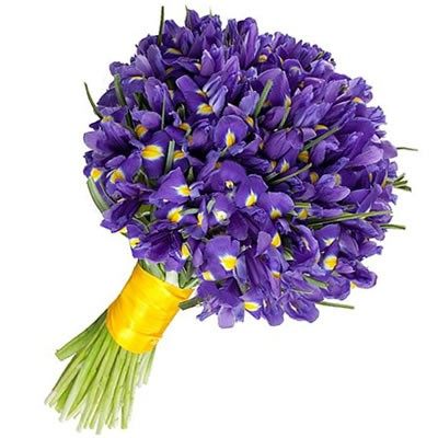 Цветы для мужчины на день рождения