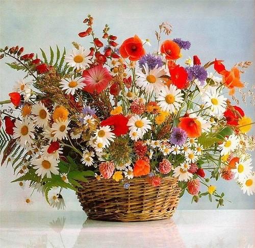 День рождения цветы полевые