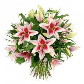 купить лилии в москве